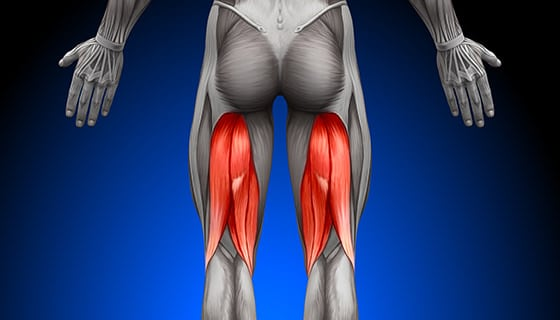 3 Causes of Hamstring Tightness